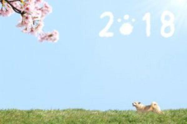 【募集します】天翔が導く象数学で占う今年【2018年】の運気セミナー@奈良【2月10日(土)】