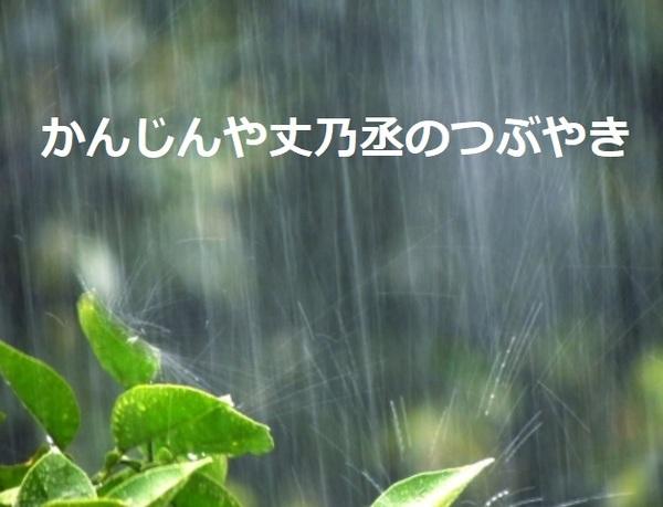 かんじんや丈乃丞のつぶやきー 文月 大暑 末候:大雨時行(たいうときどきふる)
