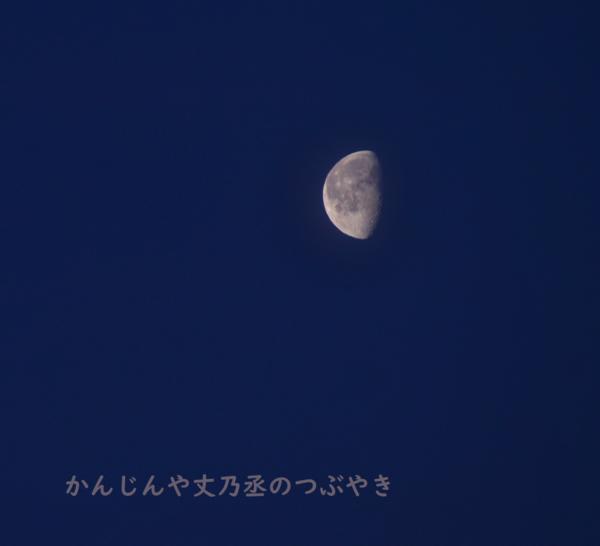 かんじんや丈乃丞のつぶやき -下弦の月
