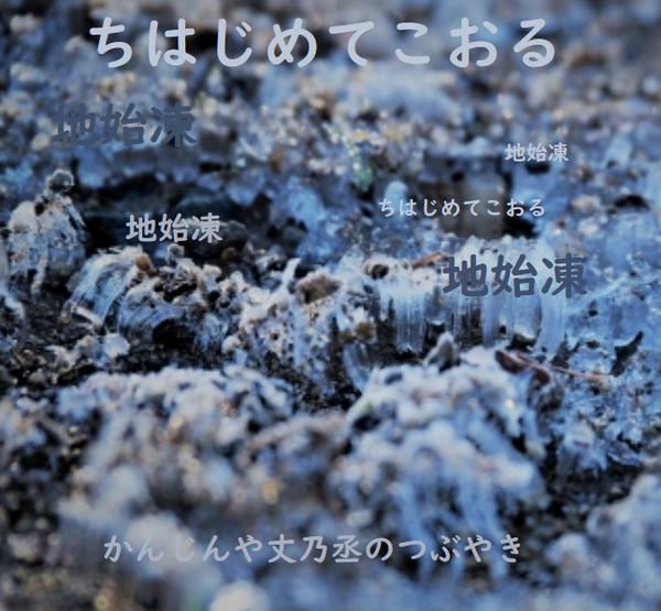 かんじんや丈乃丞のつぶやき -霜月 立冬 次候: 地始凍(ちはじめてこおる)
