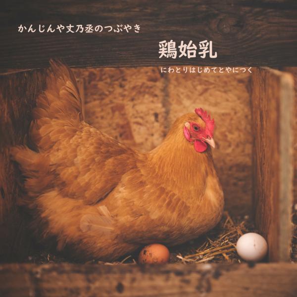 かんじんや丈乃丞のつぶやき ー睦月 大寒 末候:鶏始乳(にわとりはじめてとやにつく)