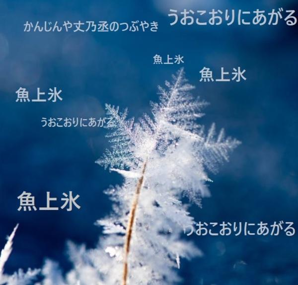 かんじんや丈乃丞のつぶやき ー 如月 立春 末候:魚上氷(うおこおりにあがる)