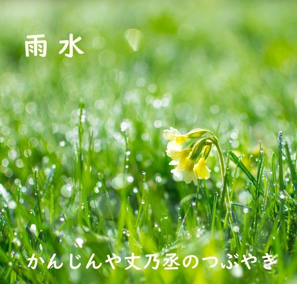 かんじんや丈乃丞のつぶやき 如月 雨水(うすい)