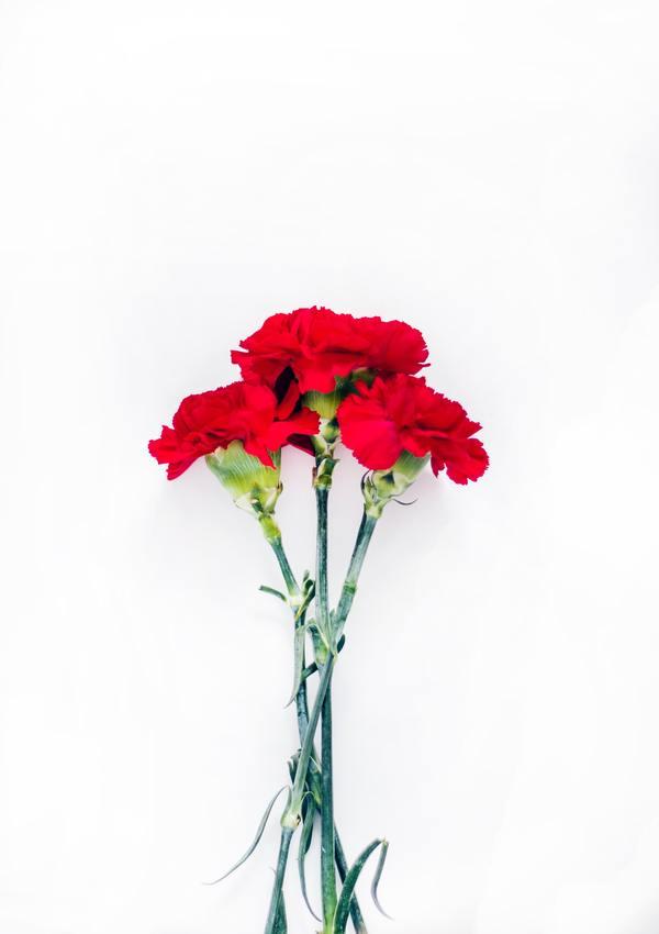 かんじんや丈乃丞のつぶやき - 愛と感謝を伝える日